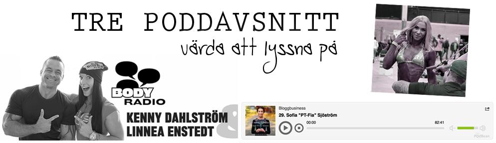 poddavsnitt3